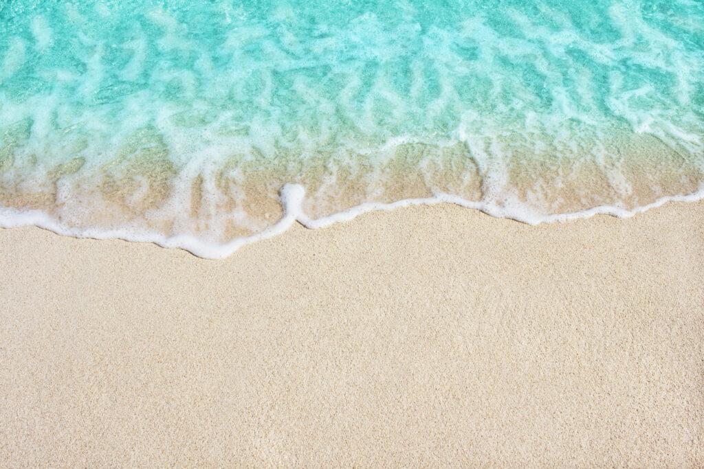 かわいいだけ?いいえ、浜辺美波は顔芸もすごいんです。【おすすめ映画3作品】
