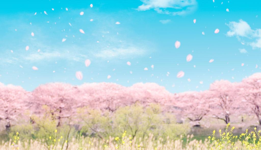 北海道の食べ物の魅力がつまった大泉洋主演映画『そらのレストラン』