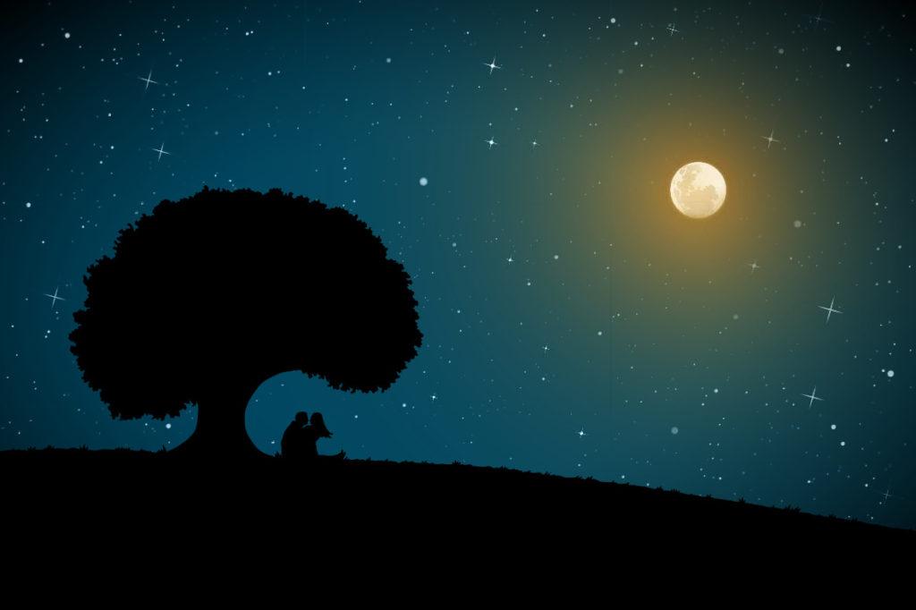永野芽郁×北村匠海で贈る感動の恋愛映画『君は月夜に光り輝く』