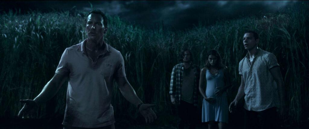 In the Tall Grass 00 53 47 21 rgb - いろんな恐怖が楽しめるNetflix映画『イン・ザ・トール・グラス -狂気の迷路-』